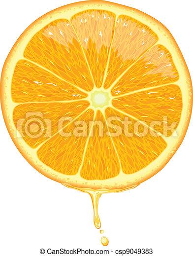 Rebanada de naranja, vector - csp9049383