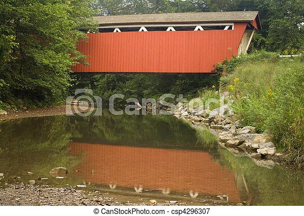 Rojo cubrió el puente sobre un arroyo - csp4296307