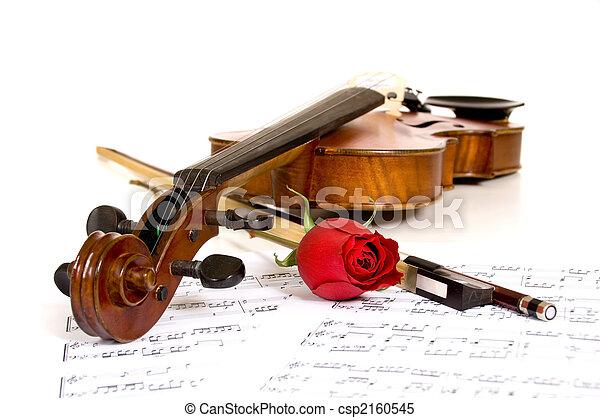 Violín, rosas y música - csp2160545
