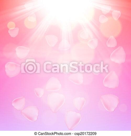 Pétalos rosados de fondo - csp20172209
