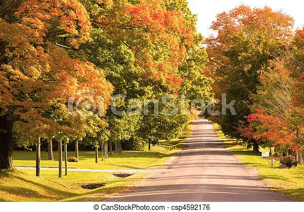 Día de otoño en el camino rural - csp4592176
