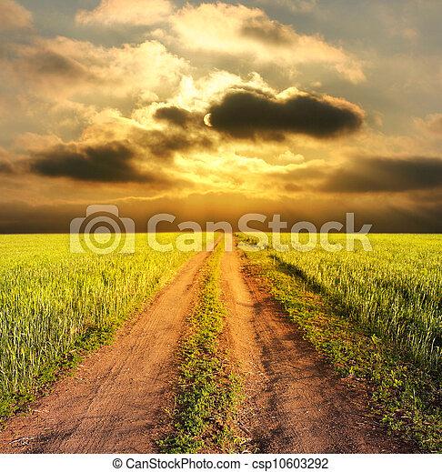 Un paisaje rural nocturno con un camino - csp10603292