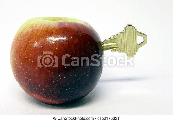 La clave de la salud - csp0175821