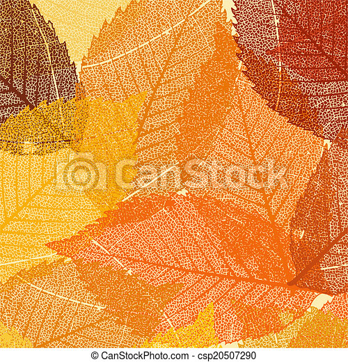 La plantilla de hojas secas de otoño. EPS 8 - csp20507290
