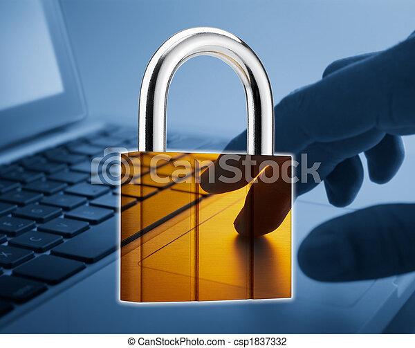 Seguridad de Internet - csp1837332