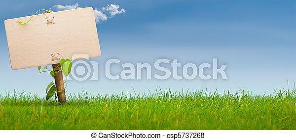 Signo verde, bandera horizontal, cielo azul - csp5737268