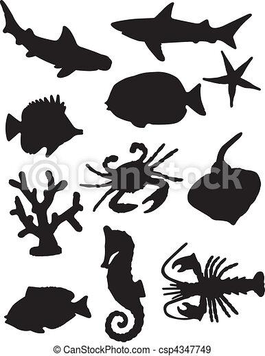 Siluetas de vida marina - csp4347749