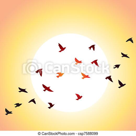 Pájaros voladores y sol brillante - csp7588099