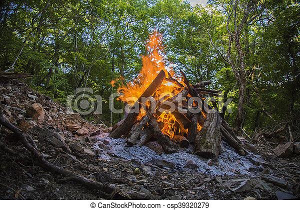 Volando sobre árboles en llamas durante un incendio forestal. - csp39320279