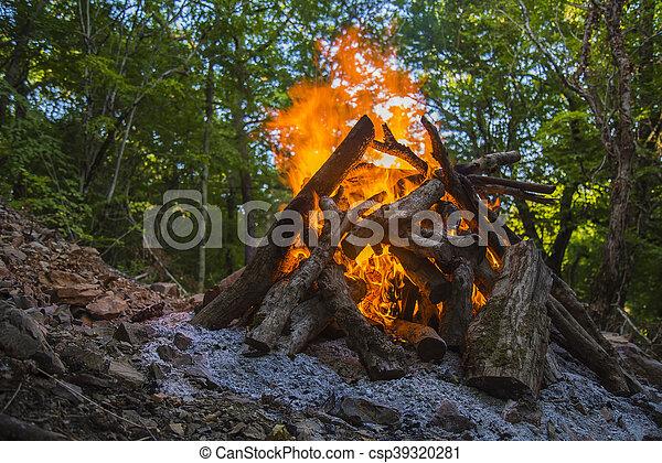 Volando sobre árboles en llamas durante un incendio forestal. - csp39320281
