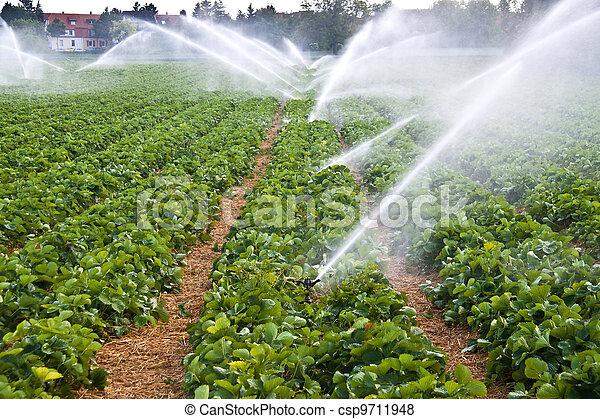 Spray de agua de agricultura - csp9711948