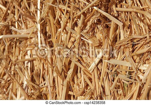 Straw - csp14238358