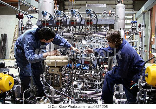 Técnicos - csp0811206
