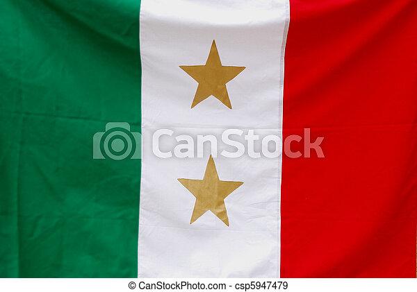 Tejas y coahuila la bandera estatal - csp5947479