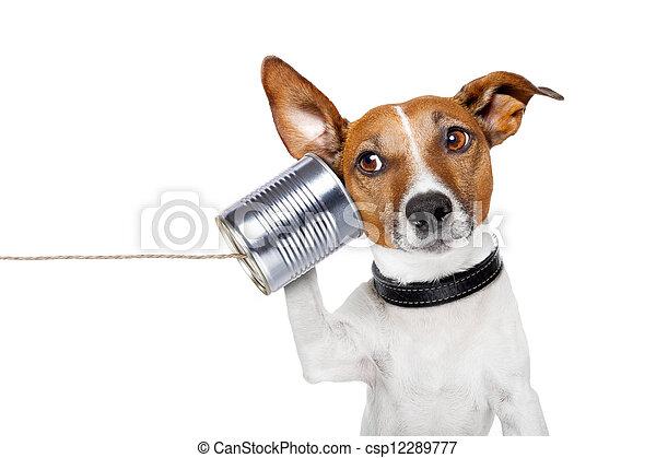 Perro al teléfono - csp12289777