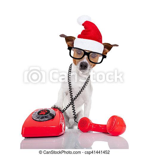 Perro en el teléfono de Navidad sombrero de Santa - csp41441452
