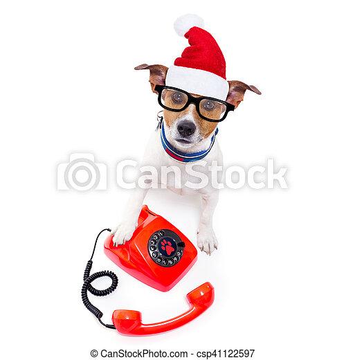 Perro en el teléfono de Navidad sombrero de Santa - csp41122597