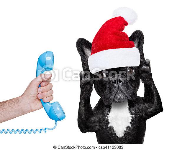 Perro en el teléfono de Navidad sombrero de Santa - csp41123083