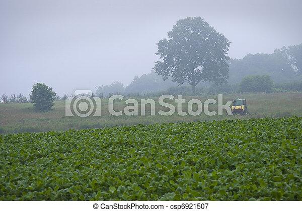 Una granja matutina - csp6921507