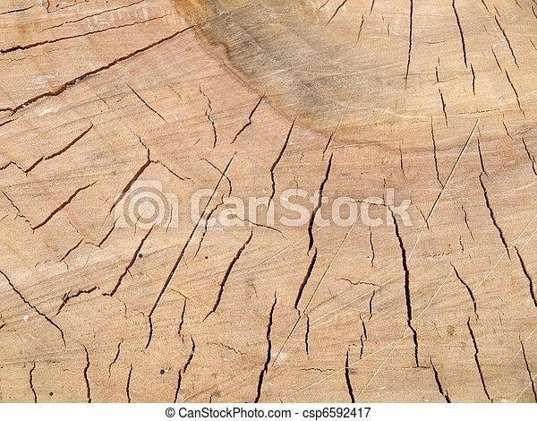 textura de madera - csp6592417