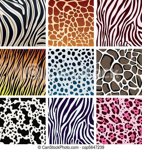 texturas de piel de animal - csp5647239