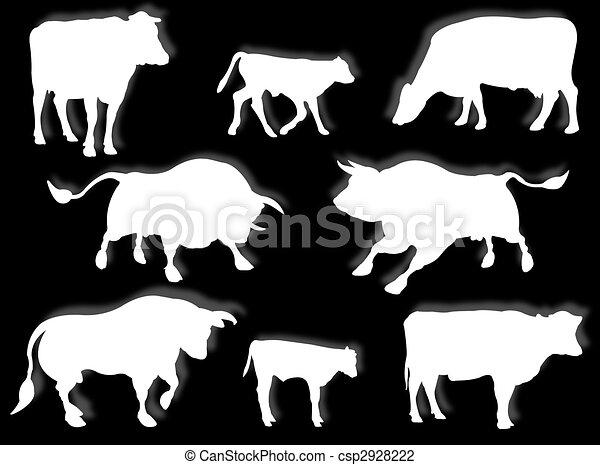 Vaca, toro, y ternera en silueta - csp2928222