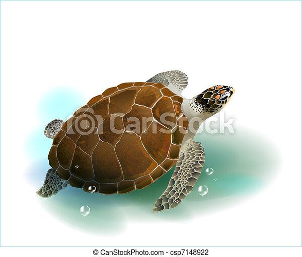 Tortuga marina nadando en el océano - csp7148922