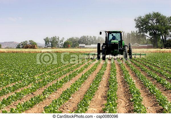 Tractor arando los campos - csp0080096