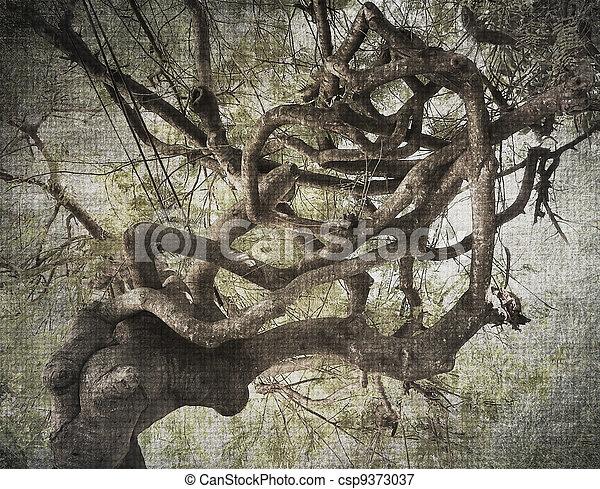 Trasfondo abstracto de árboles tropicales - csp9373037