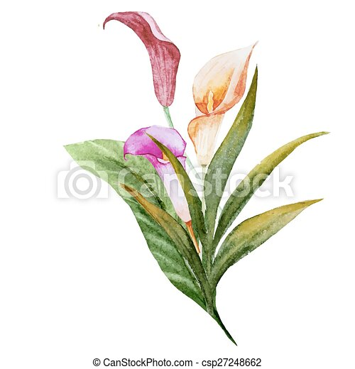 Flores tropicales de acuarela - csp27248662