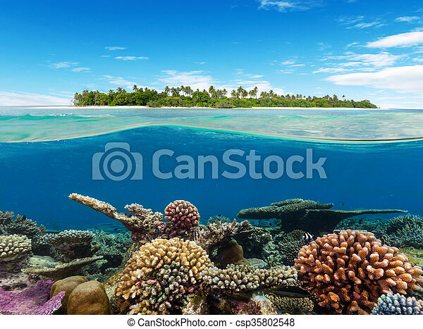 Coral subterráneo con isla tropical - csp35802548