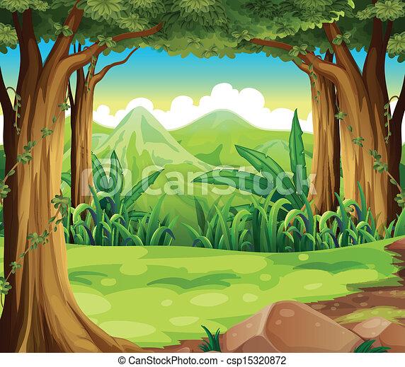 Un bosque verde cruzando las montañas altas - csp15320872