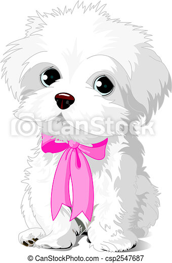 Un cachorro blanco - csp2547687