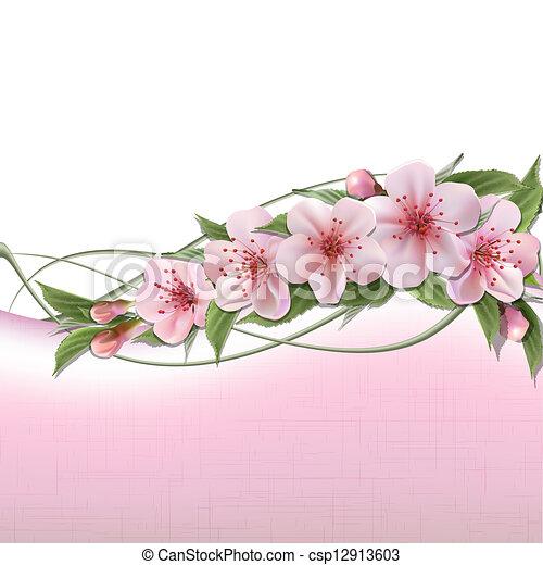 Un fondo de primavera con flores rosas de cereza - csp12913603