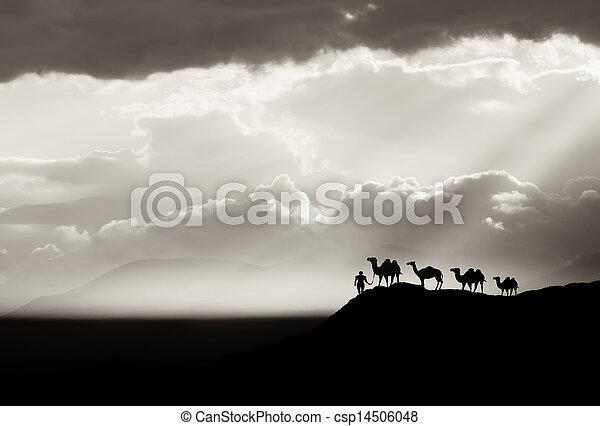 Un fondo del desierto - csp14506048