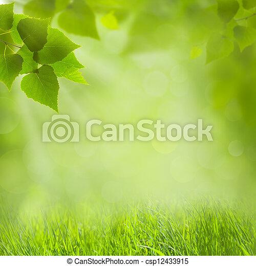 Un fondo natural de verano para tu diseño - csp12433915