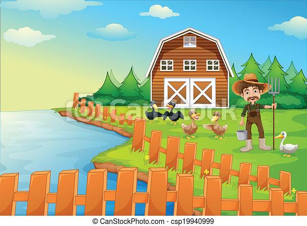 Un granjero alimentando a sus patos - csp19940999