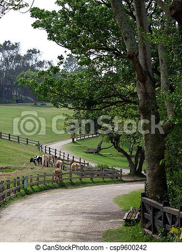 Un hermoso rancho - csp9600242