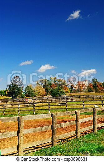 Un paisaje rural - csp0896631
