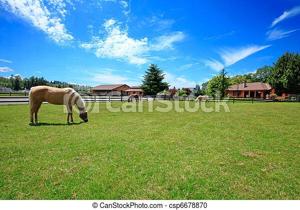 Un rancho de caballos con casa y cerca. - csp6678870
