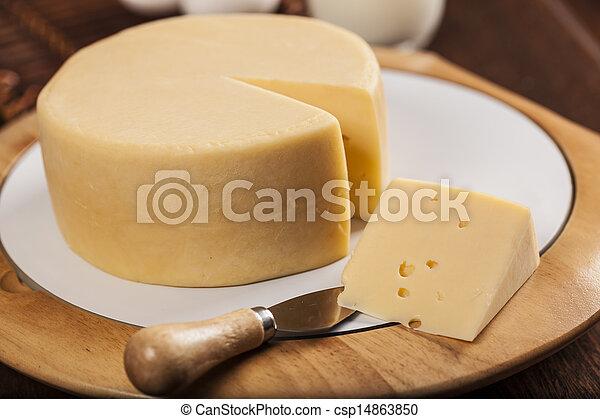 Un trozo de queso - csp14863850