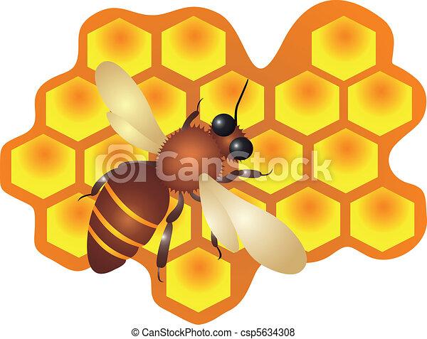 Una abeja llenando las células colmena Vector - csp5634308