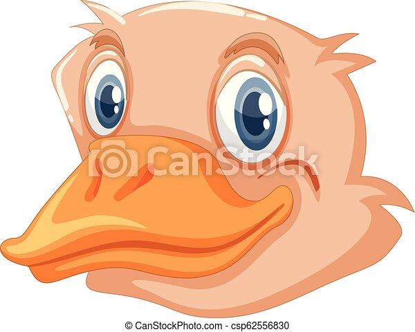 Una cara de avestruz - csp62556830