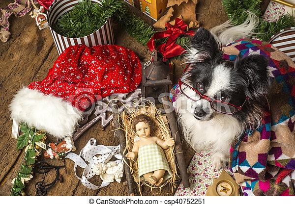Una graciosa tarjeta de navidad de perro - csp40752251