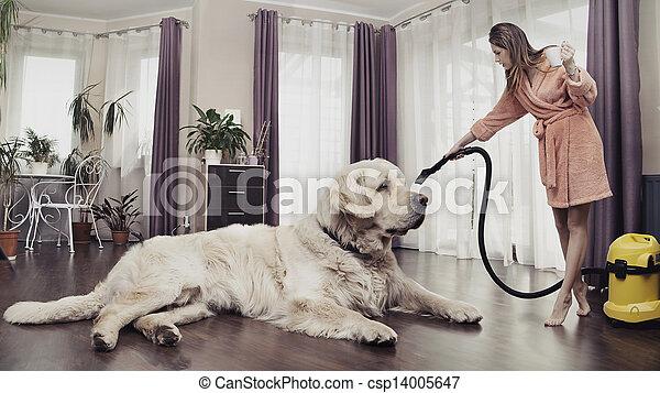 Una joven limpiando un perro grande - csp14005647