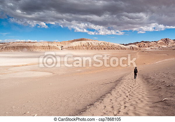 Moon Valley (Chile) - csp7868105