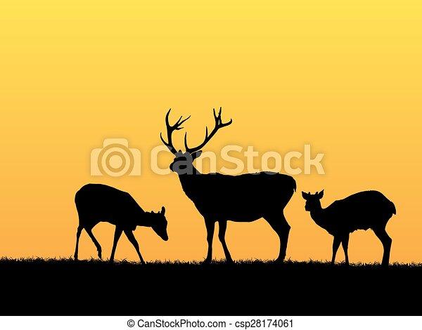 Trasfondo de ciervos - csp28174061