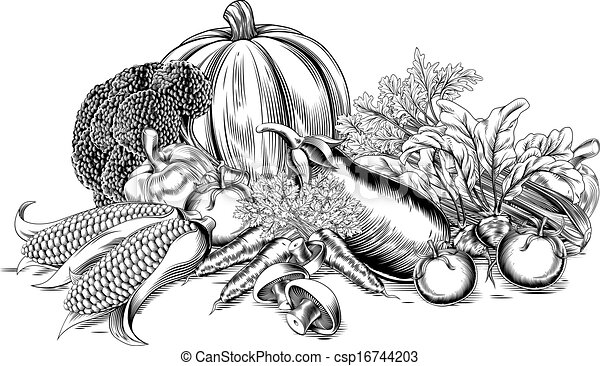 Vegetales anticuados - csp16744203