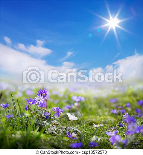 Primavera de arte o fondo de verano - csp13572570