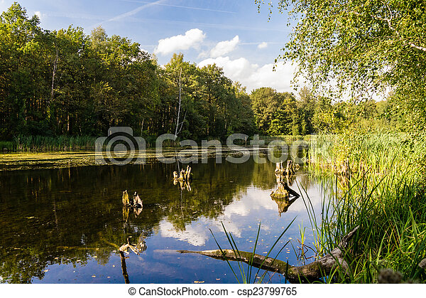 Lago en verano - csp23799765